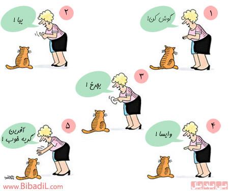 Good kitty - گربه حرف گوش کن - بی بدیل - Bibadil