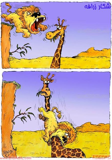 بی بدیل - شکار زرافه