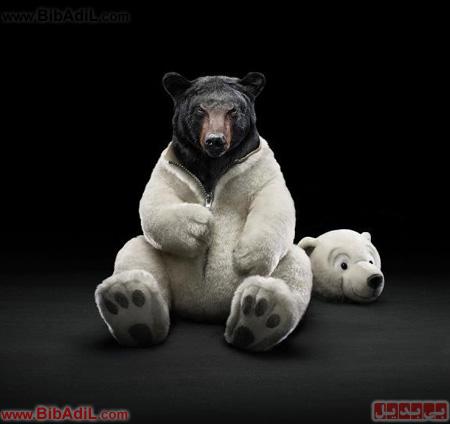 بی بدیل - خرس عروسکی