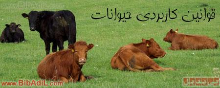 بی بدیل - قوانین کاربردی حیوانات
