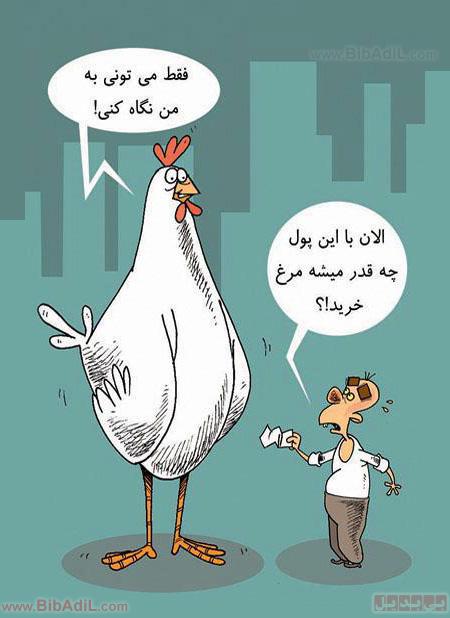 بی بدیل - در باب قیمت مرغ